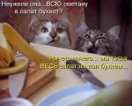 http://thumbnails31.imagebam.com/10494/e82ec1104933797.jpg
