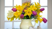Flowers and Gardens HQ wallpapers Collection 1 C98b04108224335